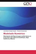 Modelado Numérico