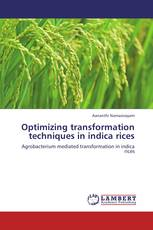 Optimizing transformation techniques  in indica rices