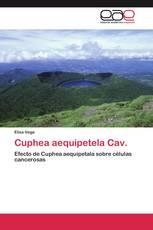Cuphea aequipetela Cav.