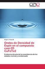 Ondas de Densidad de Espín en el compuesto casi-2D  CuFeTe2