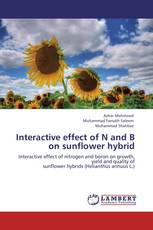 Interactive effect of N and B on sunflower hybrid