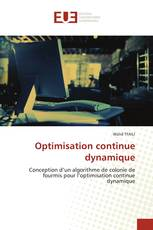 Optimisation continue dynamique