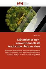 Mécanismes non-conventionnels de traduction chez les virus