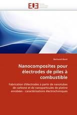 Nanocomposites pour électrodes de piles à combustible