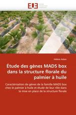 Étude des gènes MADS box dans la structure florale du palmier à huile
