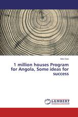 1 million houses Program for Angola, Some ideas for success