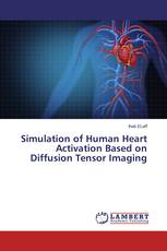 Simulation of Human Heart Activation Based on Diffusion Tensor Imaging