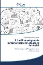 A hatékonyságmérés informatikai lehetőségei és feltételei