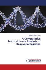 A Comparative Transcriptome Analysis of Beauveria bassiana