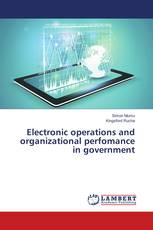 Electronic operations and organizational perfomance in government