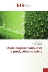 Etude biogéochimique de la production du cuivre