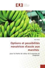 Options et possibilités novatrices d'accès aux marchés