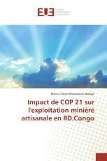 Impact de COP 21 sur l'exploitation minière artisanale en RD.Congo