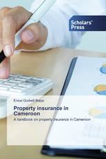 Property insurance in Cameroon
