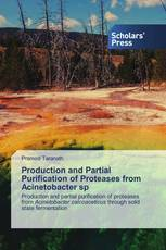 Production and Partial Purification of Proteases from Acinetobacter sp