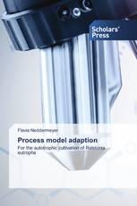 Process model adaption