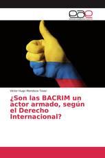 ¿Son las BACRIM un actor armado, según el Derecho Internacional?