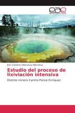 Estudio del proceso de lixiviación intensiva