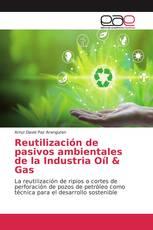 Reutilización de pasivos ambientales de la Industria Oíl & Gas