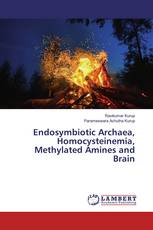 Endosymbiotic Archaea, Homocysteinemia, Methylated Amines and Brain