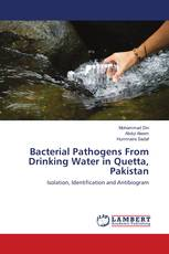 Bacterial Pathogens From Drinking Water in Quetta, Pakistan