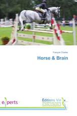 Horse & Brain