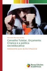 Conselho Tutelar, Orçamento Criança e a politica socioeducativa