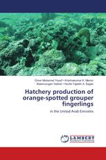 Hatchery production of orange-spotted grouper fingerlings