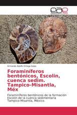Foraminíferos bentónicos, Escolin, cuenca sedim. Tampico-Misantla, Méx