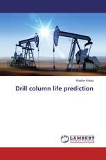 Drill column life prediction
