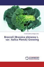Broccoli (Brassica oleracea L. var. italica Plenck) Growing