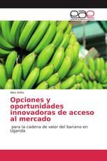 Opciones y oportunidades innovadoras de acceso al mercado