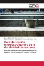 Caracterización microestructural y de la durabilidad de morteros