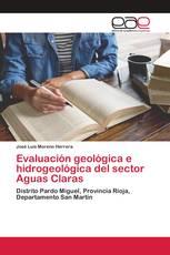 Evaluación geológica e hidrogeológica del sector Aguas Claras