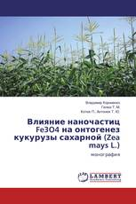 Влияние наночастиц Fe3O4 на онтогенез кукурузы сахарной (Zea mays L.)