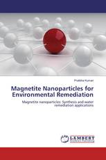 Magnetite Nanoparticles for Environmental Remediation