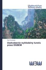 Uszkodzenie wykładziny tunelu przez DGBEM