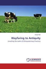 Wayfaring to Antiquity