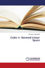 Cubic n- Normed Linear Space