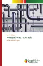 Modelação de redes gás