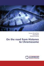 On the road from Histones to Chromosome