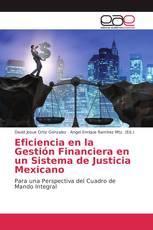 Eficiencia en la Gestión Financiera en un Sistema de Justicia Mexicano