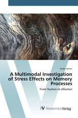 A Multimodal Investigation of Stress Effects on Memory Processes