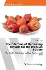 The Dilemma of Decreasing Returns for the Brazilian Society