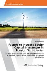 Factors to Increase Equity Capital Investment in Foreign Subsidiaries