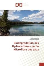 Biodégradation des Hydrocarbures par la Microflore des eaux