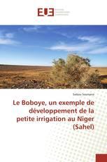 Le Boboye, un exemple de développement de la petite irrigation au Niger (Sahel)