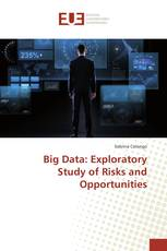 Big Data: Exploratory Study of Risks and Opportunities