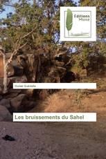 Les bruissements du Sahel