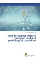 Opioid receptor efficacy during normal and pathological conditions